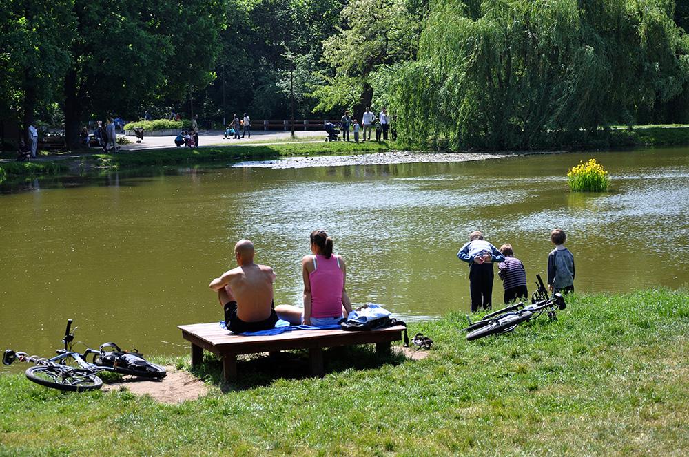 Vi løfter sløret for årets picnicprogram