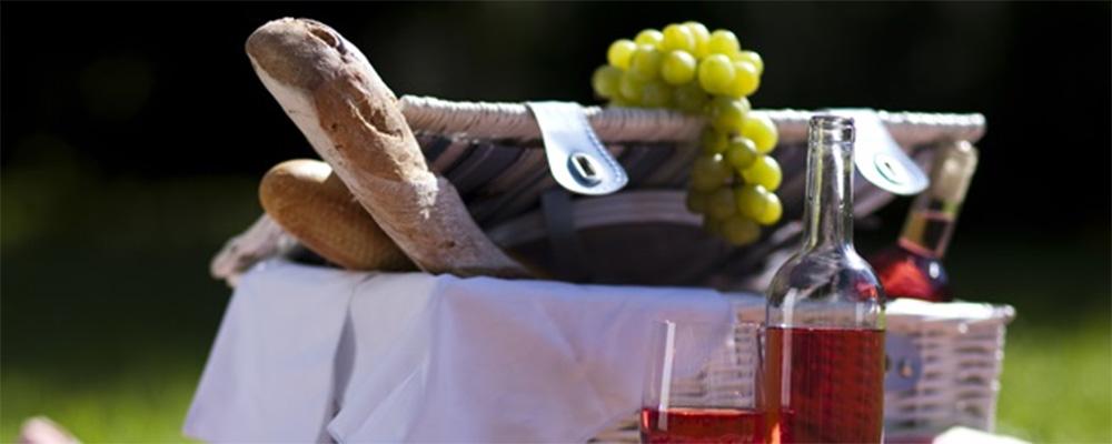 picnickurv